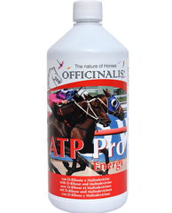 OFFICINALIS ATP Pro Energy 1 l