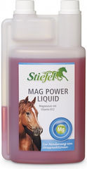 Stiefel Mag Power liquid 1 l