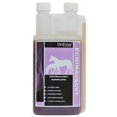 DROMY Echinaceový sirup 1000ml